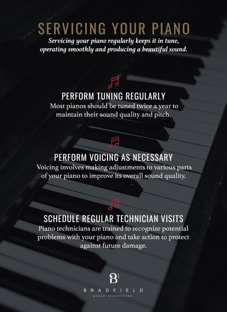 servicing your piano infographic